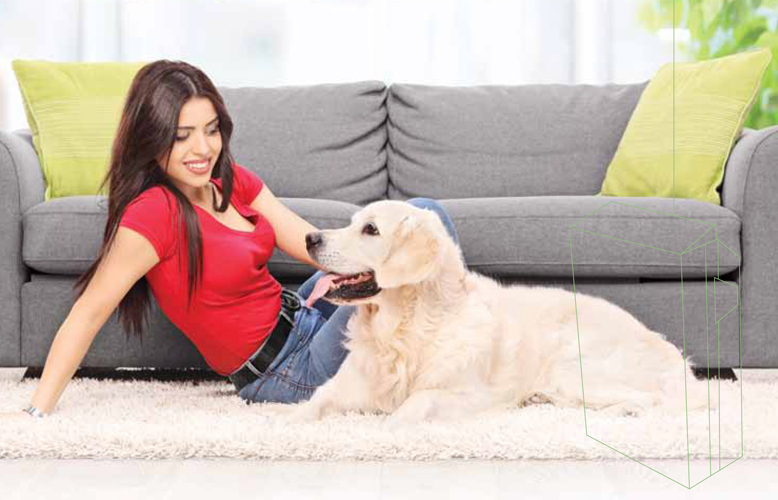 have-pets-heres-why-you-need-an-air-purifier